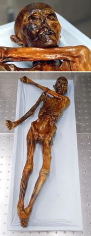 альпийская мумия